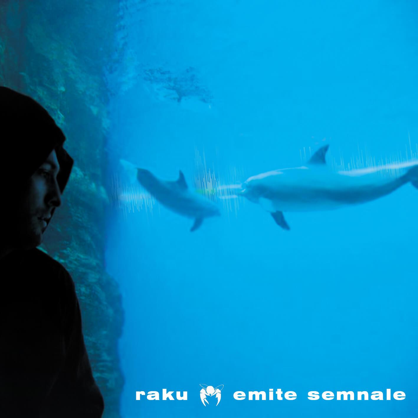 raku-emite-semnale-A