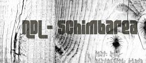 ndl_schimbarea_artwork