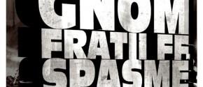 omu_gnom_fratii_ff_spasme_gras_dj_em_8_ianuaria_2012_club_underground_iasi